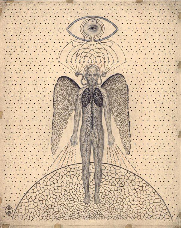 Transcendent-Man